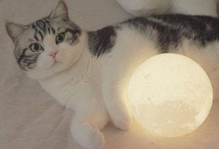 đèn led mặt trăng 3d